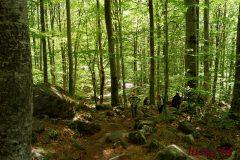Апартхотел Лъки Банско СПА & Релакс | Снимка на планински преход
