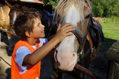 Children with horses in the children's camp   Lucky Bansko