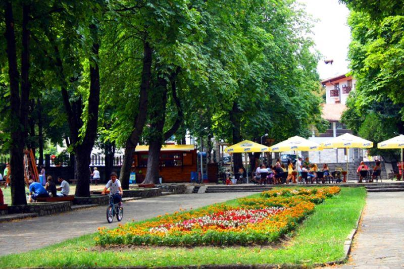 Grădină cu flori în Bansko | Lucky Bansko SPA & Relax
