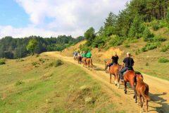 Конна езда в планината в Банско   Lucky Bansko SPA & Relax