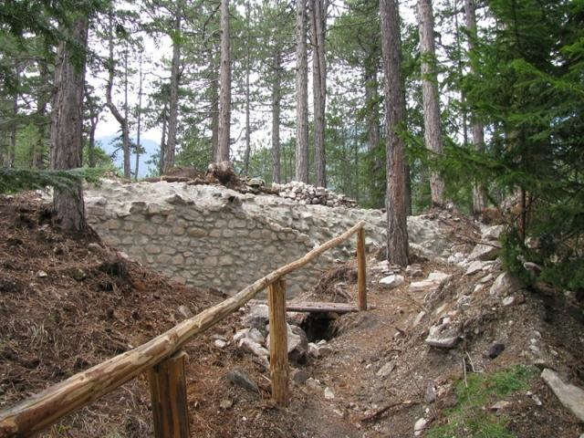 Trail through the forest in Bansko | Lucky Bansko SPA & Relax