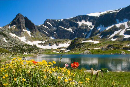 Планински пролетен пейзаж | Lucky Bansko