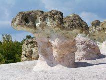 Скални гъби в Рожен