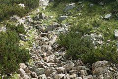 Път от хижа Вихрен до хижа Яворов | Lucky Bansko