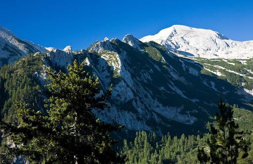 Резерват Баюви дупки в Пирин планина