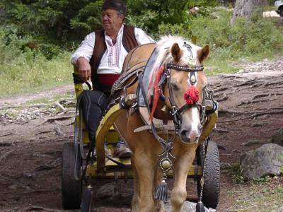 Традиции в Банско и Пирин
