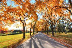Банско през есента | Lucky Bansko