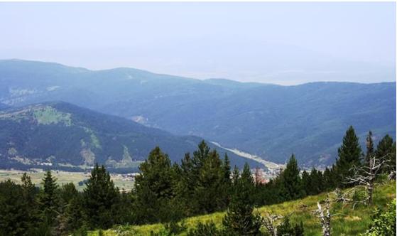 Центральный Рильский заповедник - один из крупнейших в Европе