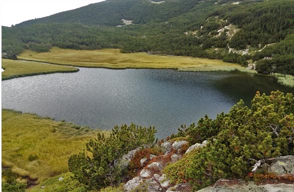 Вапски езера