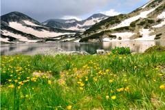 Посетителски център на Национален парк Пирин